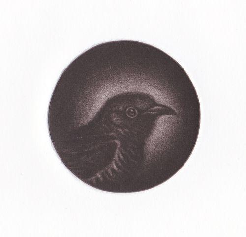 Cuckoo by GEORGIA PESKETT