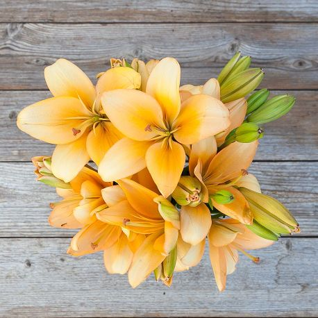 Gold Rush | A golden Lily flower bouquet
