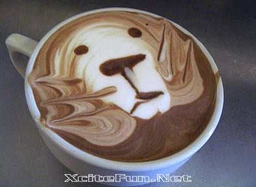 Cute Coffee  Art of the Pour