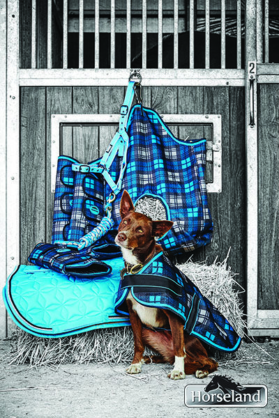 WeatherBeeta and Roma combine to match your dog and horse this season in gorgeous hues of blue all found at Horseland!