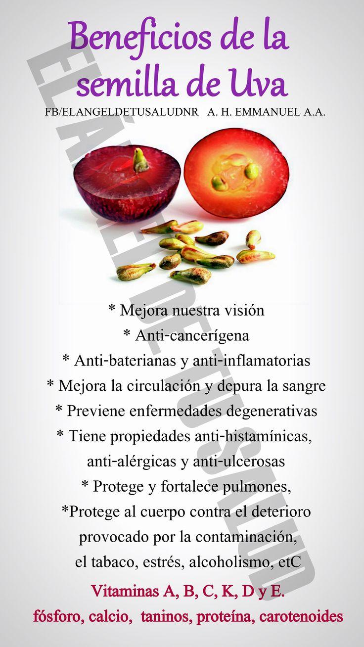 BENEFICIOS DE LA SEMILLA DE UVA #nutricion #menusaludable