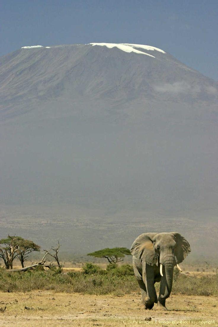 Amboseli National Park at the base of