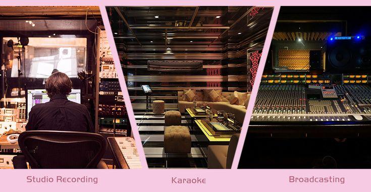 ZEEPIN Professional Condenser Microphone Studio Broadcasting Recording