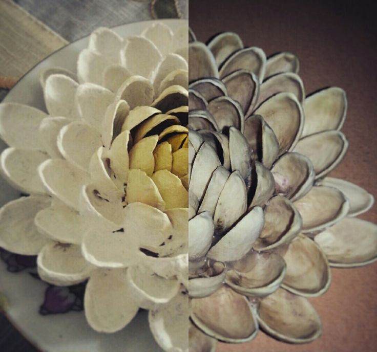 #flowers #homemade #pistachio #creative