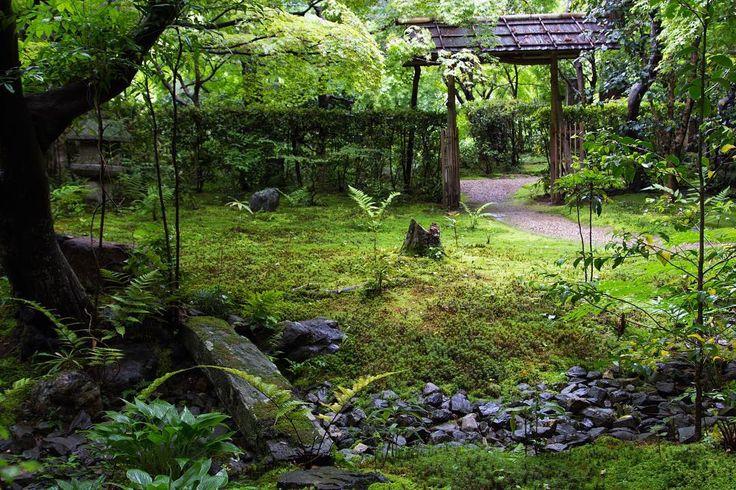 #Enrian Temple 🔻 #厭離庵 🔻 2016.5.10  少し遡って、ずっとポストしたかった厭離庵の青もみじを。通常は紅葉時期しか入れませんが、KG+写真展の会場として使われた5日間のみ入ることができた超貴重な青もみじです。 🔻 #KYOTO #JapaneseGarden #green #京都 #青もみじ #写真好きな人と繋がりたい #写真撮ってる人と繋がりたい #ファインダー越しの私の世界 #そうだ京都行こう #カメラ男子 #東京カメラ部 #tokyocameraclub #lightroom #travelawesome #travelgram #traveldiaries #travelphotography #japanfocus #japantrip #japaneseculture #ilovejapan #lovejapan #beautifulkyoto #kyotogram #kyotojapan #instagramjapan #igersjp #IG_japan