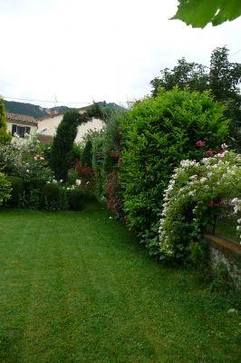 Différentes haies végétales - haie constituée d'arbustes persistants et mélée d'un rosier liane - Montrez-nous votre clôture végétale