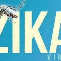 El Zika Y Porqué Nos Enamoramos