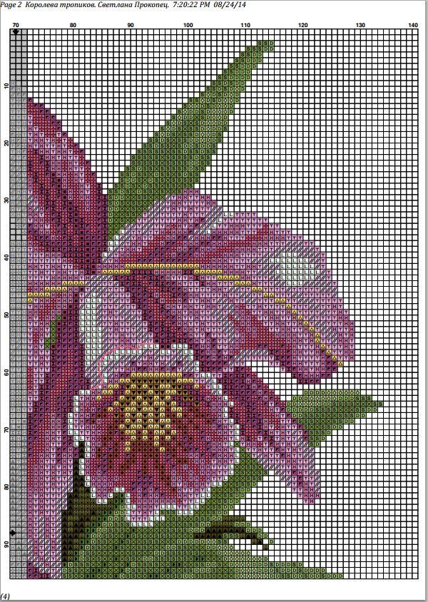 c204062c59983f12b45aff849431076a.jpg (600×844) orq1b