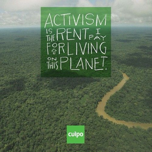 Activism Quotes: Words Of Inspiration Images On Pinterest