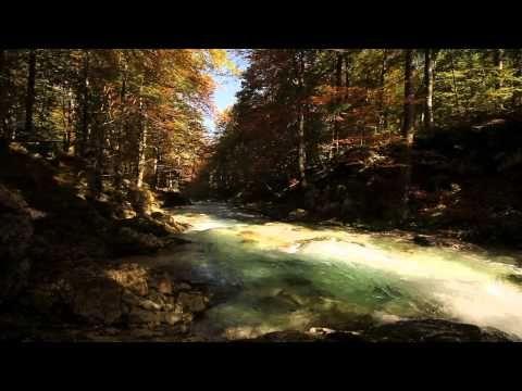 Fotografie della Natura | Friuli - Terra da scoprire | Autunno | Friuli Venezia Giulia