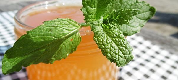 Muntgelei   Makkelijk 2 pers   Ingrediënten  o500 ml vers geperst troebel appelsap o4 koffielepels citroensap o4 eetlepels muntblaadjes (fijngesneden) – dit zijn er een 40-tal o280 g Tiense Geleisuiker Extra 2+1  Bereiding  1.Giet het appelsap in een kookpot en doe er de munt en het citroensap bij.  2.Zet het vuur aan en laat het 1 tel koken. Zet de kookpot van het vuur en laat het geheel een uurtje trekken. 3.Neem een zeef en giet de vloeistof er door. De muntblaadjes zullen in de…