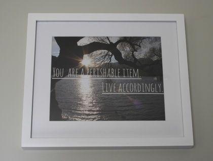 """You are a Perishable Item"" Framed Photograph   Felt"