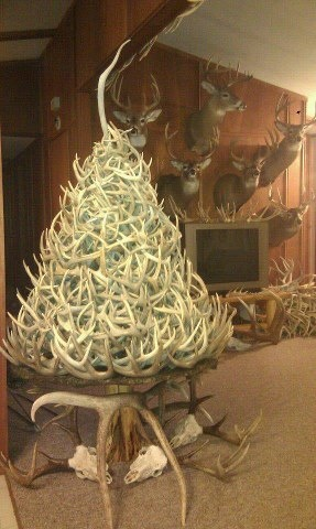 Shed Antler Tree for Christmas!