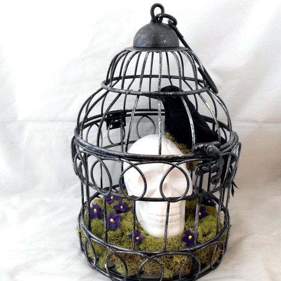 Bird Cage Art And Craft