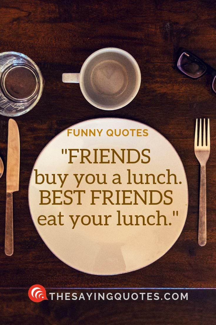 800 Funny Quotes About Life Love And Friend The Saying Quotes Funny Quotes Funnt Quotes Lunch Quotes