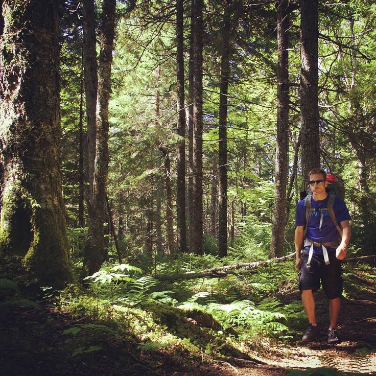"""""""Thousands of tired, nerve-shaken, over-civilized people are beginning to find out that going to the mountains is going home; that wildness is a necessity"""" ― John Muir  Gridless team member @calixxxx  hiking through the #Fundy trails  #outdoors #hiking #explore #explorenb #explorecanada #adventure #gridlessadventure #naturelovers_united #trees  #scenery #naturelovers #gridlesslife #quotes"""