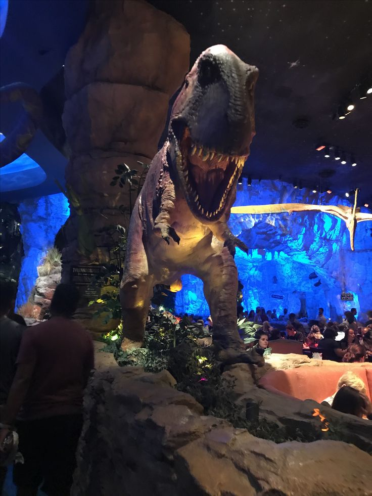 T rex cafe is fun for families and they have great food!
