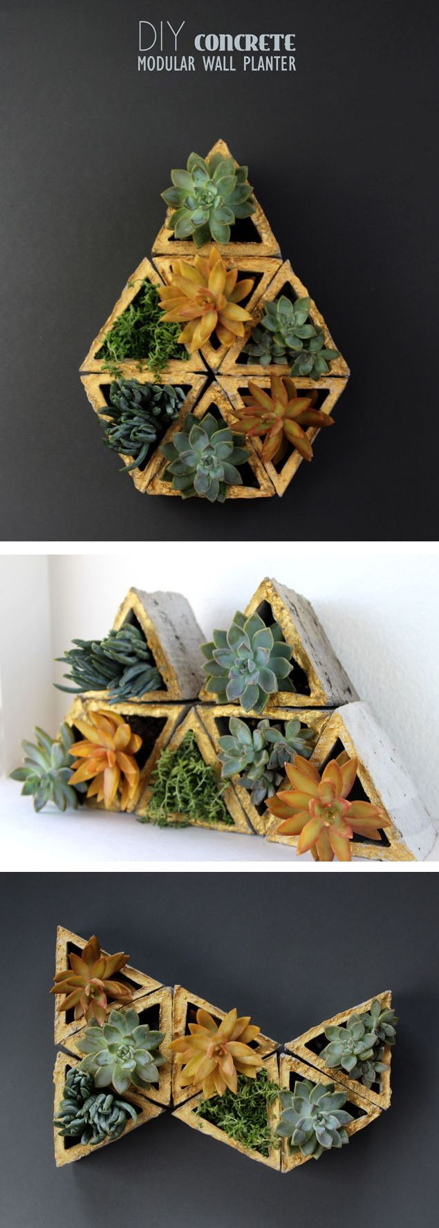 DIY Concrete modular planters! What a unique and eye-catching way to bring your garden inside!