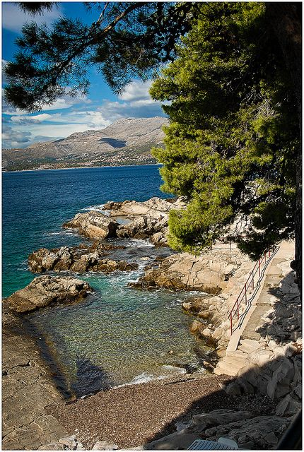 dalmatian coast near cavtat, croatia