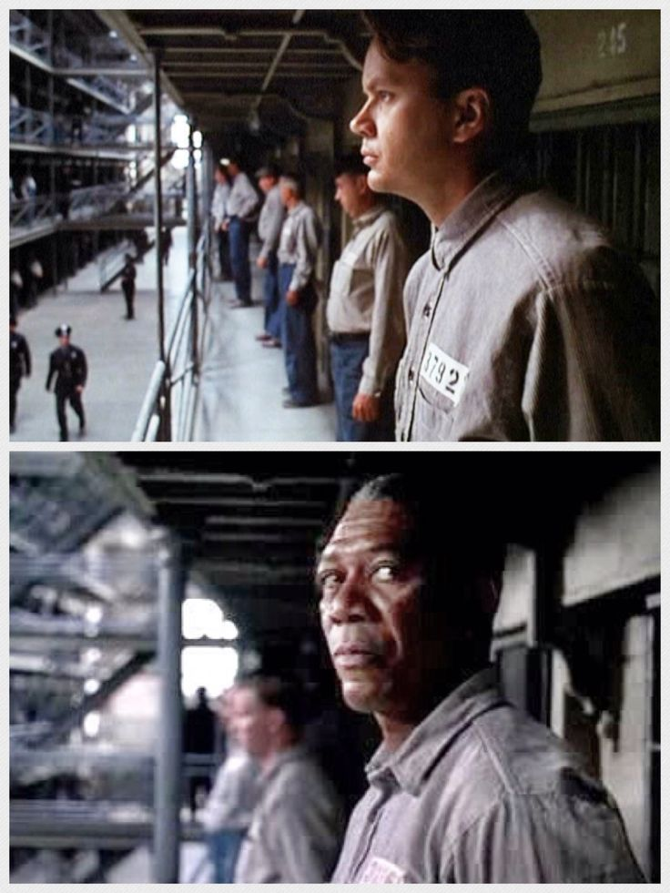 exploring themes of the shawshank redemption english literature essay Shawshank redemption because it perfectly illustrates what institutionalization does to a person after years of being stuck in the same place this clip relates to the theme institutionalization/prison life because it shows how brooks reacted after being set free from prison.