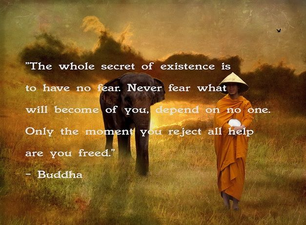 Great blog with nice quotes, healthy recipes and exercises: http://www.carolinebakker.com/buddha-quotes/    #Buddha Quotes, #Quotes, #Buddha