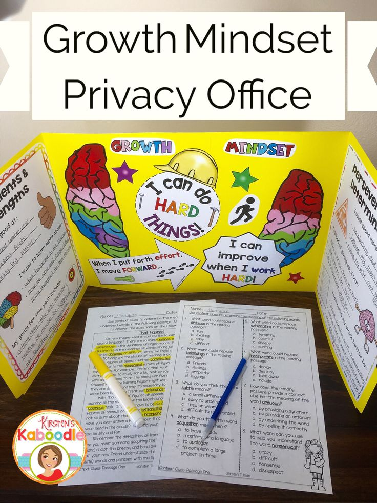 Are you teaching your students about growth mindset? This privacy office folder kit is a perfect way for your students to keep growth mindset concepts fresh while working. This growth mindset product also provides a place for students to set goals and identify strengths and strategies when dealing with frustration or difficulty.  Student friendly and teacher approved, this product is sure to be a hit!