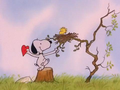 Peanuts charlie brown valentines day be my valentine charlie brown snoopy