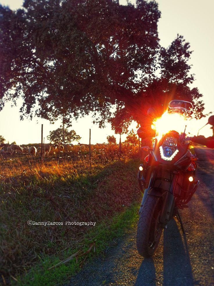 My KTM Adventure 1050