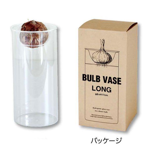 水耕栽培 Vase