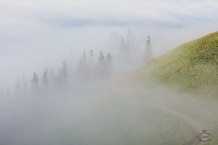 Fog.05 by Beniamin Iliut on 500px