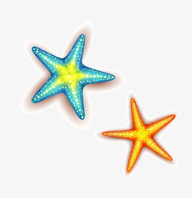 Starfish Png And Clipart Starfish Clipart Starfish Clip Art