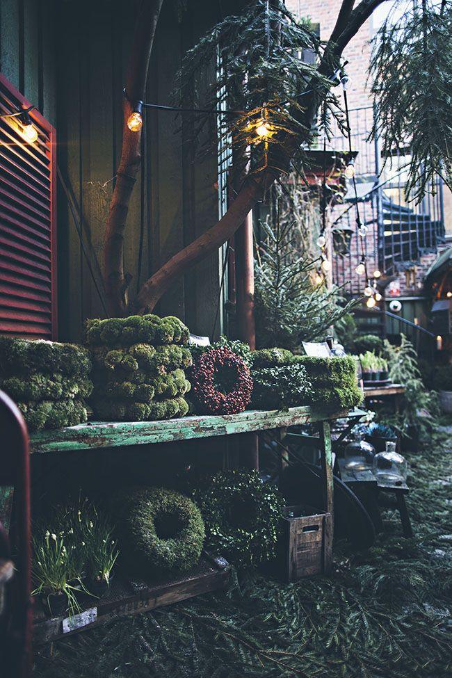 I helgen blev en tur till Halmstad och fina butiken Rosencranz. Trots avsaknaden av snö, så var det riktig julfeeling på deras vackra innergård. Kameran bara älskar allt, och motiven tycks aldrig ta slut. Jag kände det där stråket av glädje sprida sig då jag gick omkring och fotade, […]