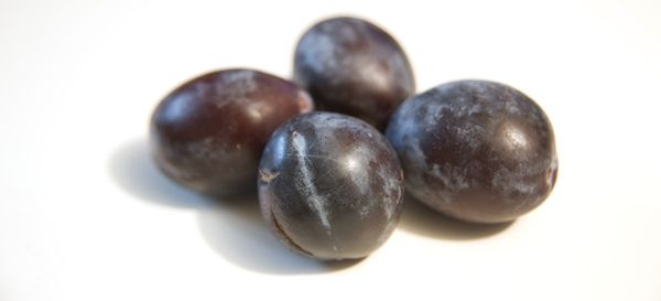 Learning to the Love the Italian Prune Plum « The Heavy Table – Minneapolis-St. Paul and Upper Midwest Food Magazine and Blog