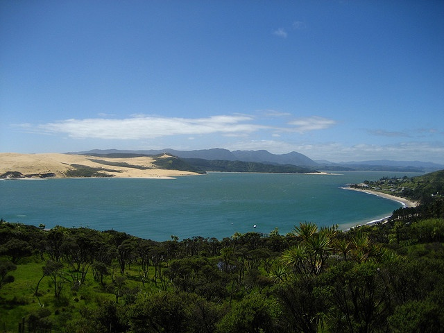 Hokianga Harbour, Northland, NZ