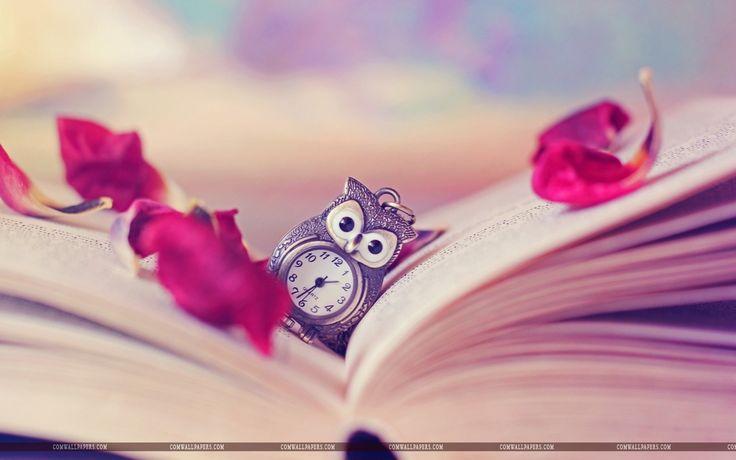 Owl Watch Book Hd Wallpaper