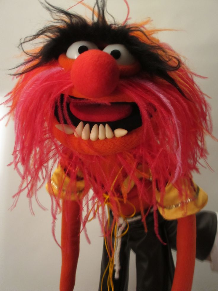 17 best images about my muppets on pinterest vinyls - Animal muppet images ...
