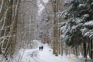 camino de nieve  JuanKRuales Photography