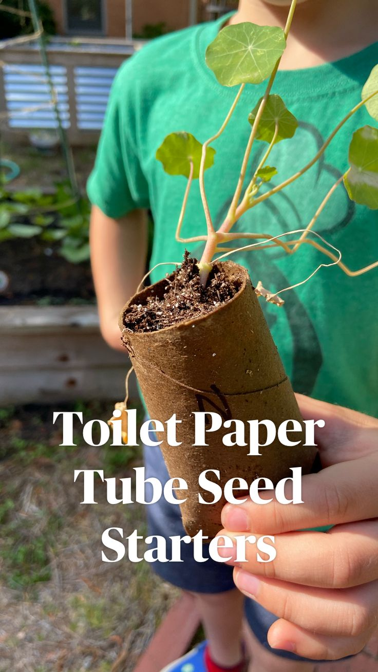 Toilet Paper Tube Seed Starters – garden tips for beginners Garden Yard Ideas, Garden Projects, Greenhouse Gardening, Container Gardening, Gardening For Beginners, Gardening Tips, Growing Plants, Growing Vegetables In Pots, Growing Seeds
