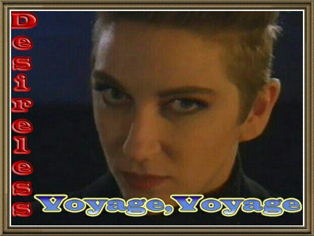 Voyege Voyage - Desireless.