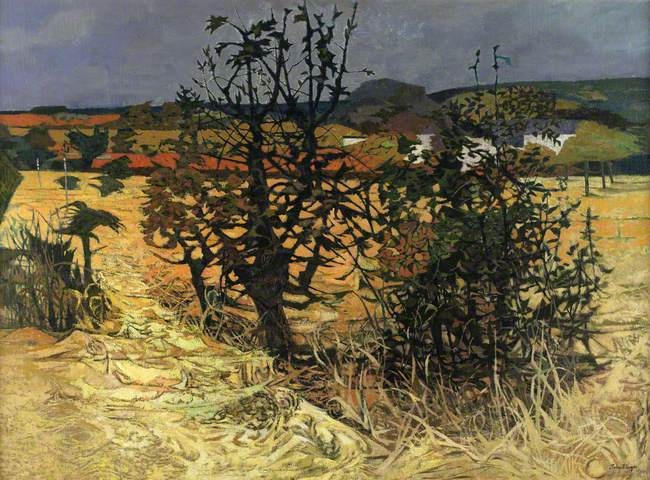 John Elwyn paintings, Cardiganshire Meadows
