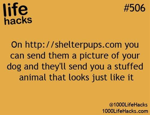 On http://shelterpups.com  you can send them a picture of your dog and they'll send you a stuffed animal that looks just like it