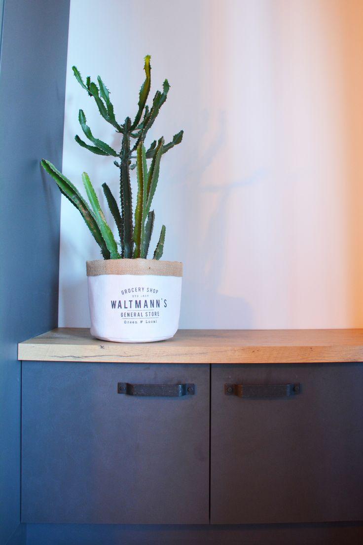 Magnifique cactus dans son cache pot en tissu blanc et liège dans le banc en bois de la cuisine ! Allez on apporte des plantes à sa déco !