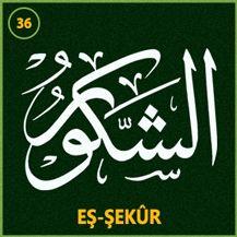 36_es_sekur
