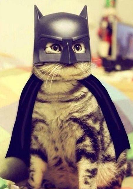 hola!!!soy batman