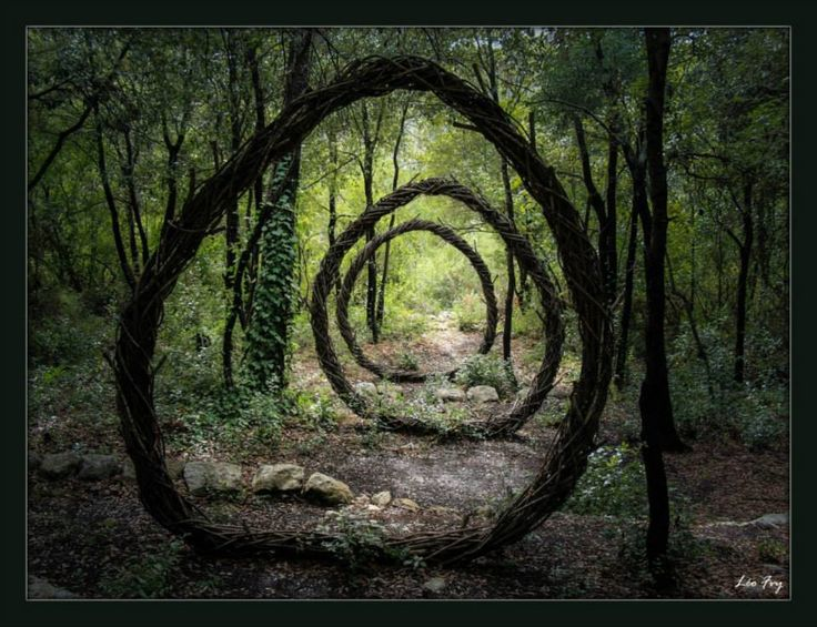 Forest Sculptor Spencer Byles: Sculpture No 2. A Year in a French Forest 2011-2012.