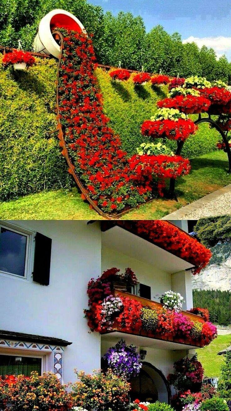 D M I D I A - Foto de um belo jardim sobre uma casa #dmidia #wjmwilsonmoura