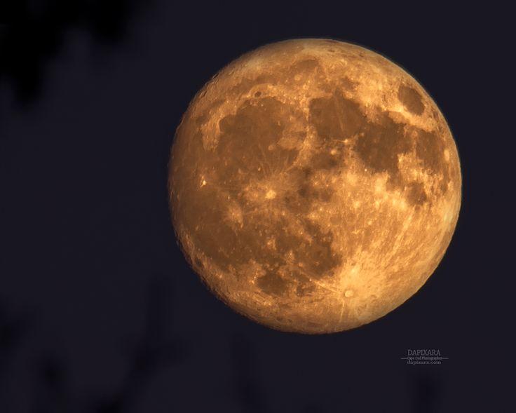 Waxing Gibbous Full Moon rising Today over Wellfleet Cape Cod National Seashore. Dapixara photography https://dapixara.com