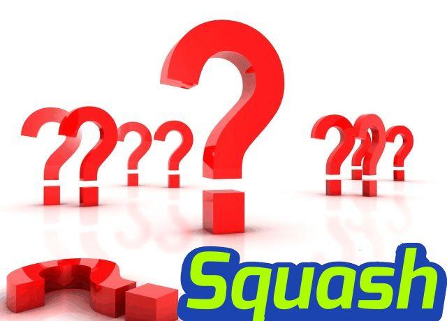 De ce sa joci Squash?  Pentru ca este sportul tuturor, pentru ca te relaxezi si elimini stress-ul, socializezi si intri in competitie...  Pentru ca este sportul tuturor, pentru ca te relaxezi si elimini stress-ul, socializezi si intri in competitie