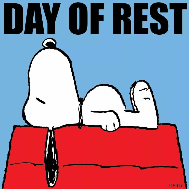 Day of rest.