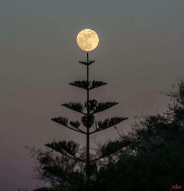 Perfect Moon Photograph #TheSun,TheMoon&TheStars